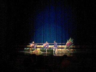 20051204102613-flamenco.jpg