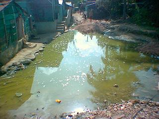 La piscina de la escuelita